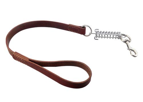 Laisse courte en cuir pour chien Laisse en plomb Golden Retriever pour animaux de compagnie avec ressort amortisseur